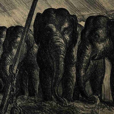 John Steuart Curry, 'Circus Elephants', 1936