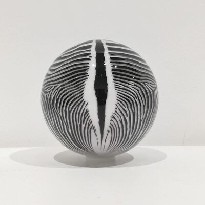 Mark Matthews, 'Grevy's Zebra', 2019