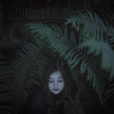 Cig Harvey, 'The Ferns, Devin', 2013