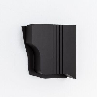 Johannes Wohnseifer, 'Black Swan', 2020
