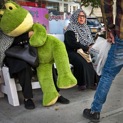 Neil O. Lawner, 'Egyptian Woman and Kermit, Queens, NY'