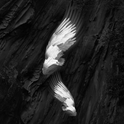 Eriko Kaniwa, 'Wings 22', 2019