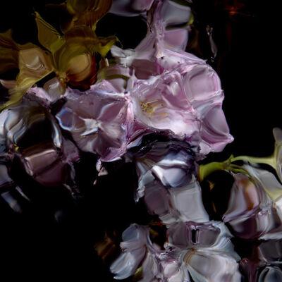 Alexander James Hamilton, 'Floral Study [0448]', 2012