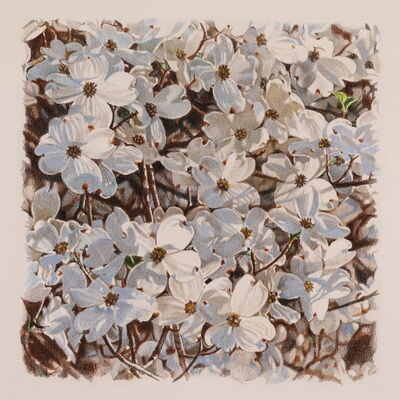 Jeffrey Vaughn, 'Dogwood Blossoms', 2021