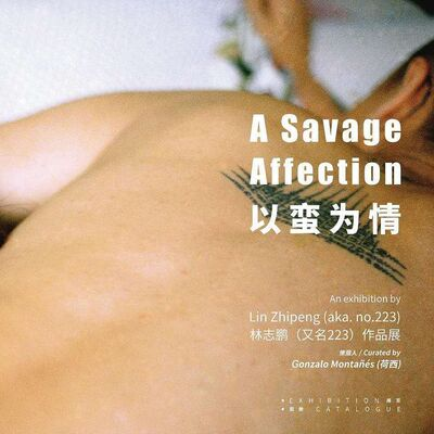 A Savage Affection, installation view