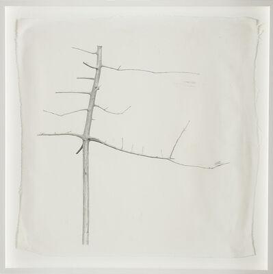 Simone Casetta, 'La danseuse, dalla serie 'Alberi, nature'', 1990