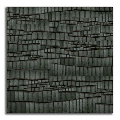 Steve Sabella, 'Metamorphosis', 2012