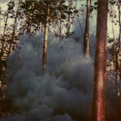 Julia Beyer, 'Haunted Woods III (Forever and Ever)', 2014