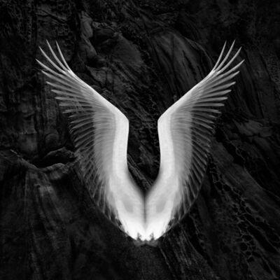 Eriko Kaniwa, 'Wings 21', 2019