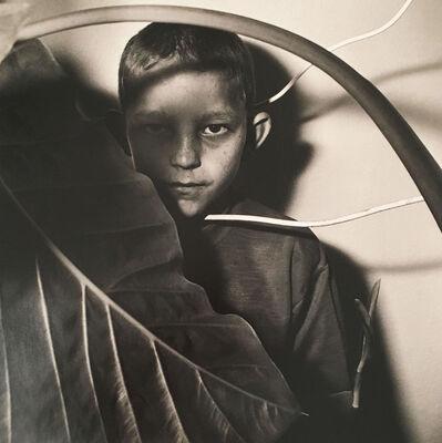 Roger Ballen, 'Untitled', 1999