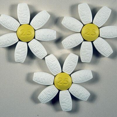 Colleen Wolstenholme, 'Daisies', 1999