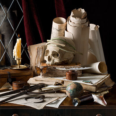 Paulette Tavormina, 'Vanitas V (Journeys), after E.C.', 2015
