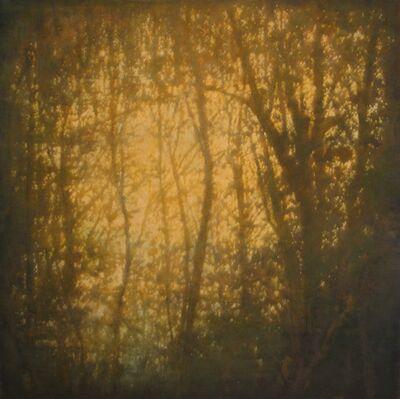 Thomas Monaghan, '$8,500 -The Shore Path (Dusk)', 2011