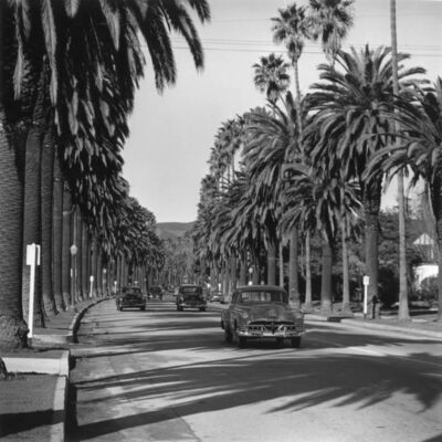 Slim Aarons, 'Cannon Drive, Beverly Hills', 1952