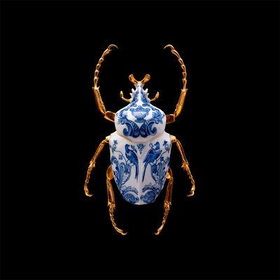 Samuel Dejong, 'Anatomia Parvus Prints, Goliath Beetle Closed', 2020