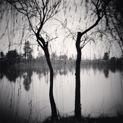 Michael Kenna, 'Afternoon Trees, Shexian, Anhui, China', 2008