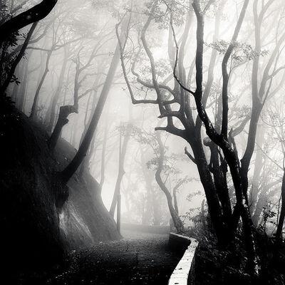 Josef Hoflehner, 'Peak Fog, Study 2, Hong Kong ', 2009