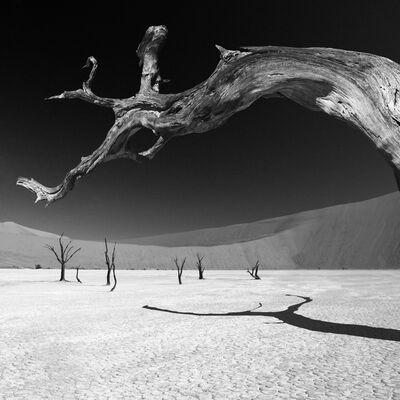 Chris Simpson, 'Dead Vlei IV - Namibia', 1996