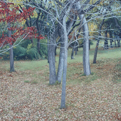 Garrett Middaugh, 'Autumn in the Backyard'