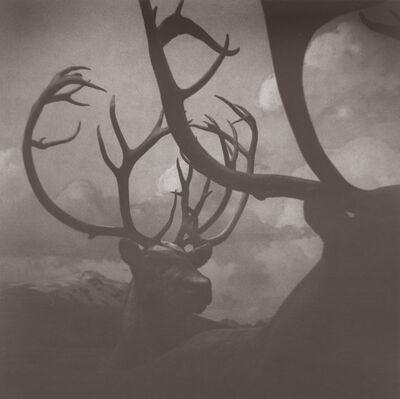 Gregor Törzs, 'Boy on Safari #5', 2006