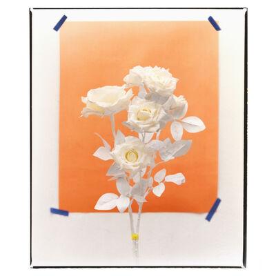 Clarrisse D'Arcimoles, 'Tinted Flowers 06', 2020