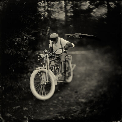 Alex Timmermans, 'Born to be wild', ca. 2018