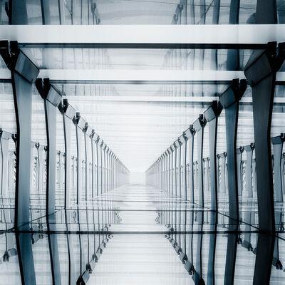 Jose Conceptes, 'Matrixcidio', 2014