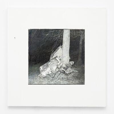 Juan Araujo, 'El primer hombre I', 2019