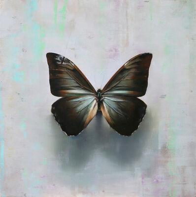 Alpay Efe, 'Butterfly A.a', 2016