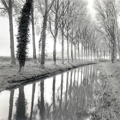 Rolfe Horn, 'Canal Damme, Belgium', 2017
