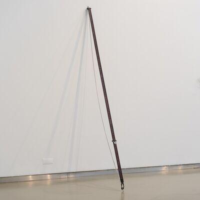 Sara Bichão, 'Costas de cavalo', 2019