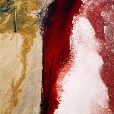 David Maisel, 'The Lake Project 1', 2001
