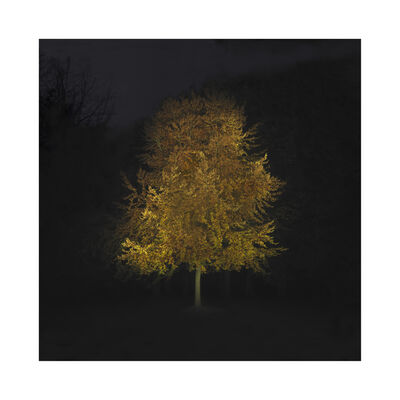 Ralf Peters, 'Herbst 3', 2020