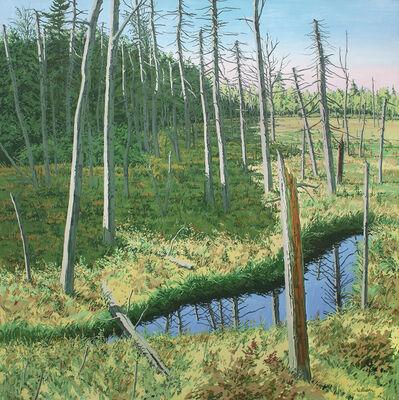 Neil G. Welliver, 'Marsh Shadow', 1984
