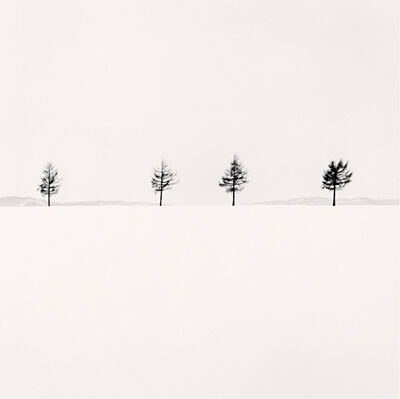 Michael Kenna, 'Kurosawa's Trees, Study 1, Memanbetsu, Hokkaido, Japan', 2004