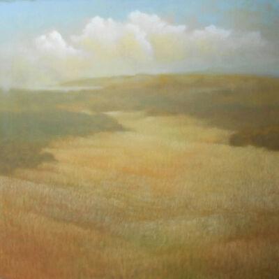Donna McGinnis, 'Sonoma / 2759', 2016