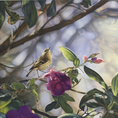 Diane Andrews Hall, 'Ruby Crowned Kinglet I'