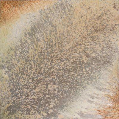 Clément Borderie, 'Mother Earth: Evolution IV', 2013-Spring Summer Autumn