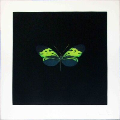 Damien Hirst, 'The Souls on Jacob's Ladder Take Their Flight (Small Green)', 2007
