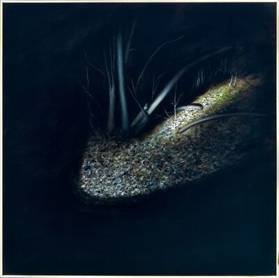 Elsa Muñoz, 'Night Forest', 2011