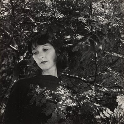 Imogen Cunningham, 'Portrait of a Woman with Mimosa Leaves', 1959