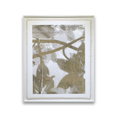 Bill Claps, 'Tropical Thicket'
