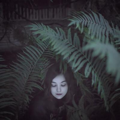 Cig Harvey, 'The Ferns', 2013