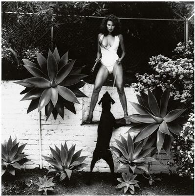 Helmut Newton, 'Raquel Welch', 1981