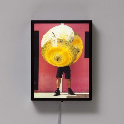 Delson Uchôa, 'Portrait Bicho da Seda Amarelo', 2014