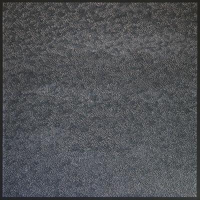 Sophia Dixon Dillo, 'Untitled (2667)', 2018