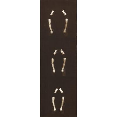 Aldo Tagliaferro, 'Identificazione oggettivante (particolare n.14) Variante seppia n. 24', 1973