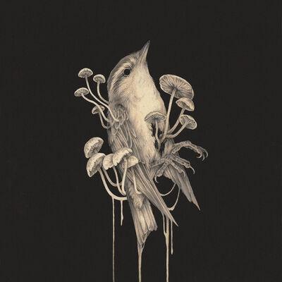 Teagan White, 'Bleached', 2018