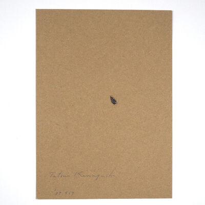 Tatsuo Kawaguchi, 'Relation – One Seed of Lead / Grape', 1987
