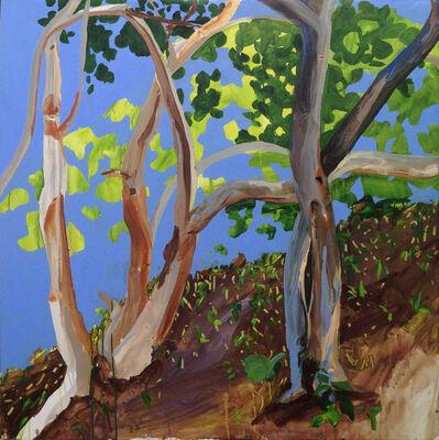 Hulda Guzmán, 'Beach Grape Tree', 2014